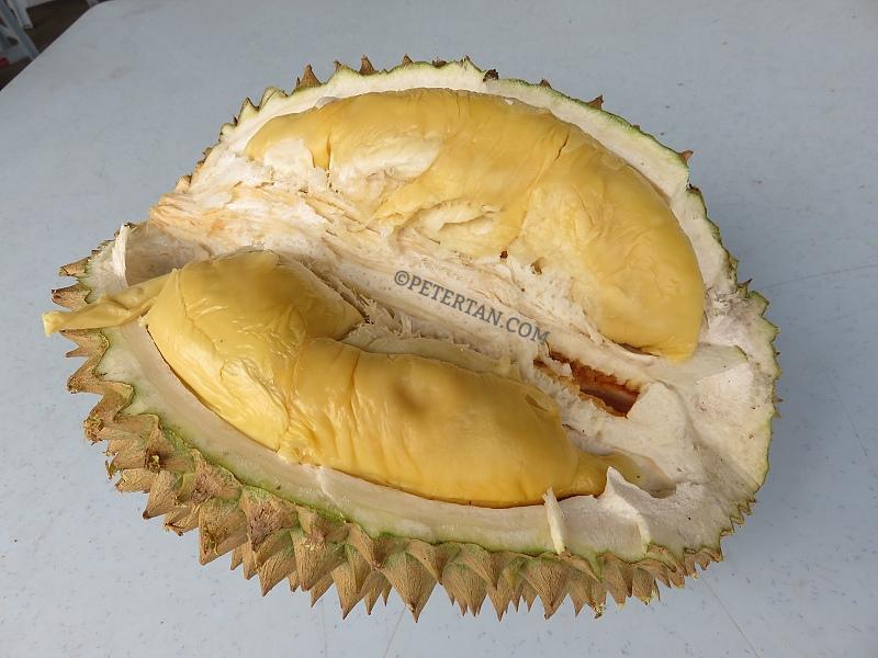 Tek ka durian