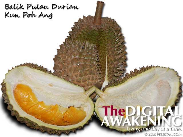 Kun Poh Ang Balik Pulau durian